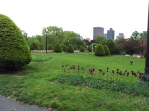 Boston Public Garden with part of the Boston skyline